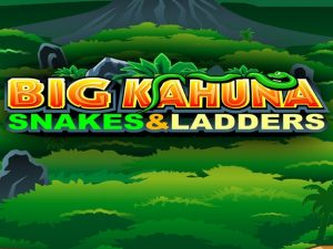 Big Kahuna 2 Snakes and Ladders Free Slot Machine Game