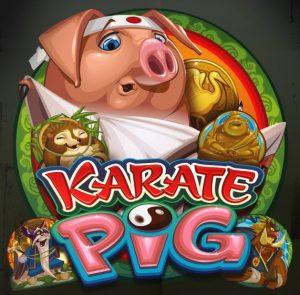 Karate Pig Free Slot Machine Game