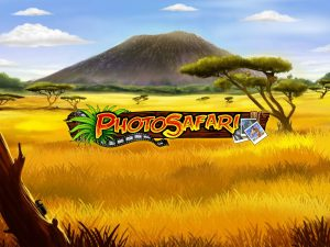 Photo Safari Free Online Slot Game