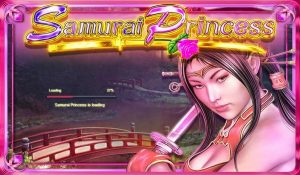 Samurai Princess Slot Game