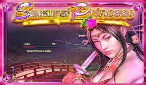 Samurai Princess Slot Game