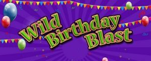 Wild Birthday Blast Fruit Machine Game