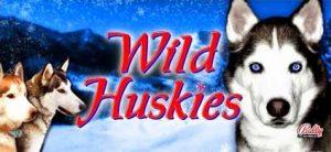 Wild Huskies Free Slot Machine Game