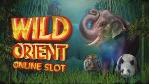 Wild Orient Free Slot Machine Game