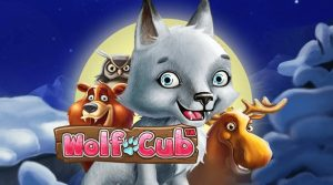 Wolf Cub Slot Machine